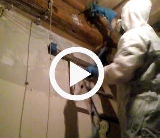 Vídeos tratamientos contra las termitas en la madera